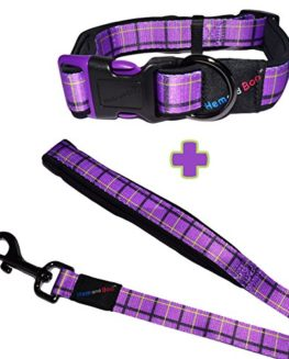 HB-Summer-Check-Neoprene-Padded-Dog-Collar-Lead-Set-Choose-Size-0