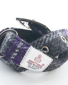 Hebridean-Thistle-Dog-Collar-in-Stunning-Harris-Tweed-0