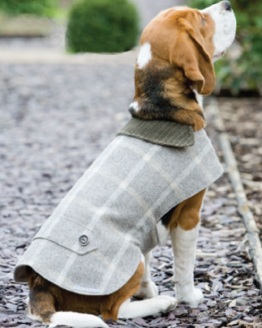 Tweed Dog Coats